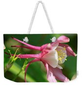 Columbine From The Songbird Series Named Robin Weekender Tote Bag