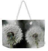 Dandelion Close-up Weekender Tote Bag