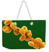 Eurotium Spores Weekender Tote Bag