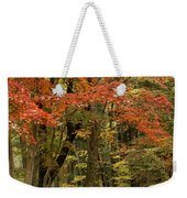 Forest In Autumn Weekender Tote Bag