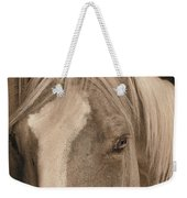 Golden Palomino Weekender Tote Bag
