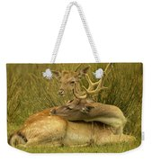 Having A Rest Weekender Tote Bag