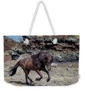 Icelandic Black Stallion, Iceland Weekender Tote Bag