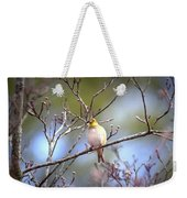 Img_0001 - American Goldfinch Weekender Tote Bag