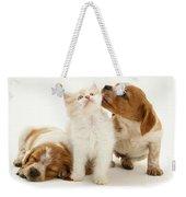 Kitten And Puppies Weekender Tote Bag by Jane Burton