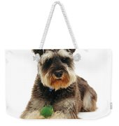 Miniature Schnauzer Weekender Tote Bag by Jane Burton