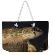 Mobile Logperch Percina Kathae Weekender Tote Bag