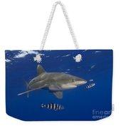 Oceanic Whitetip Shark Weekender Tote Bag