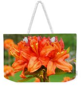 Office Art Prints Azaleas Botanical Landscape 11 Giclee Prints Baslee Troutman Weekender Tote Bag