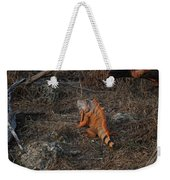Orange Iguana Weekender Tote Bag