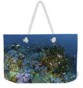 Reef Scene With Coral And Fish Weekender Tote Bag by Mathieu Meur