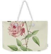Rosa Indica Vulgaris Weekender Tote Bag by Pierre Joseph Redoute