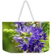 Royal Botanical Garden Of Madrid Weekender Tote Bag