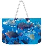 Saipan Marine Life Weekender Tote Bag