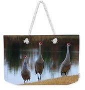 Sandhill Crane Family By Pond Weekender Tote Bag