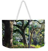 Savannah Spring Perspective Weekender Tote Bag