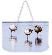Sea Birds Weekender Tote Bag