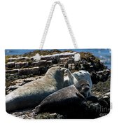 Sea Lions At Sea Lion Cove State Marine Conservation Area Weekender Tote Bag
