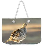 Sharp Tailed Grouse Weekender Tote Bag