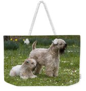 Soft-coated Wheaten Terriers Weekender Tote Bag