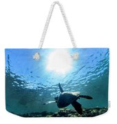 Turtles View Weekender Tote Bag