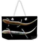 Valdina Farms Salamander Weekender Tote Bag