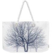 Winter Trees In Fog Weekender Tote Bag by Elena Elisseeva