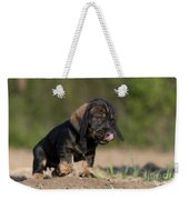 Wire-haired Dachshund Puppy Weekender Tote Bag