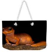 Yellow-eye Ensatina Salamander Weekender Tote Bag
