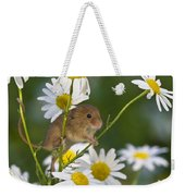Young Eurasian Harvest Mouse Weekender Tote Bag