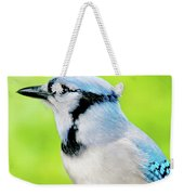 Blue Jay, Animal Portrait Weekender Tote Bag