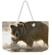 Grizzly Bear Ursus Arctos Horribilis Weekender Tote Bag