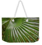 Rainforest At Foxground, Kiama Weekender Tote Bag