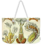 Vintage Zoological Weekender Tote Bag