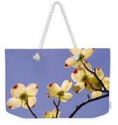 2009 Springtime  6399  Weekender Tote Bag
