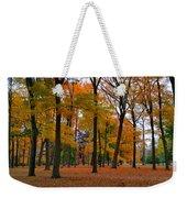 2015 Fall Colors - Washington Crossing State Park-1 Weekender Tote Bag