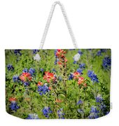 201703300-068 Indian Paintbrush Blossom 2x3 Weekender Tote Bag