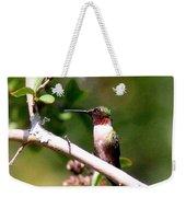 2274 - Hummingbird Weekender Tote Bag