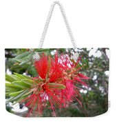 Australia - Red Flower Of The Callistemon Weekender Tote Bag