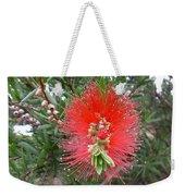 Australia - Callistemon Red Flower Weekender Tote Bag