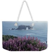 2a6101 Arched Rock And Blue Pod Lupine Ca Weekender Tote Bag