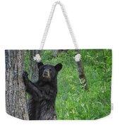 Black Bear Yearling Weekender Tote Bag