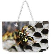 Common Wasp Vespula Vulgaris Weekender Tote Bag