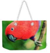 Crimson Rosella Weekender Tote Bag