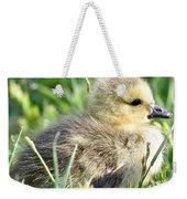 Cute Baby Goose Weekender Tote Bag