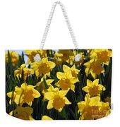 Daffodils In The Sunshine Weekender Tote Bag