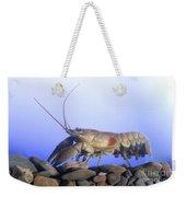Female Rusty Crayfish Weekender Tote Bag