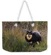 Finnish Lapphund Weekender Tote Bag