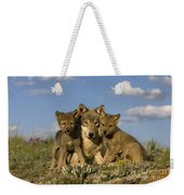Gray Wolf And Cubs Weekender Tote Bag