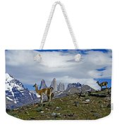 Guanacos In Torres Del Paine Weekender Tote Bag